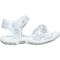 Cipők Lány Szandálok / Saruk Chicco 01065377000000 Fehér