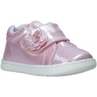 Cipők Gyerek Rövid szárú edzőcipők Chicco 01065679000000 Rózsaszín