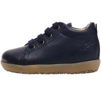 Cipők Gyerek Divat edzőcipők Falcotto 2014581 01 Kék