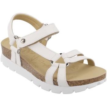 Cipők Női Szandálok / Saruk Panama Jack  Blanco