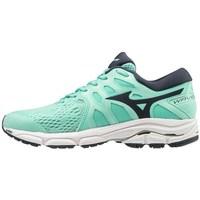 Cipők Női Fitnesz Mizuno Wave Equate 4
