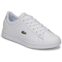 Cipők Gyerek Rövid szárú edzőcipők Lacoste CARNABY EVO BL 21 1 SUJ Fehér