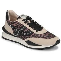 Cipők Női Rövid szárú edzőcipők Ash SPIDER STUDS Bézs / Fekete