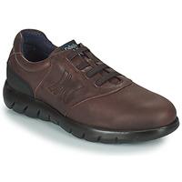 Cipők Férfi Oxford cipők CallagHan PLUVIAM Barna