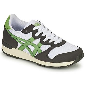 Cipők Rövid szárú edzőcipők Onitsuka Tiger ALVARADO Zöld / Fekete  / Fehér