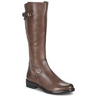 Cipők Női Városi csizmák Caprice 25504-361 Tópszínű
