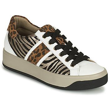 Cipők Női Rövid szárú edzőcipők IgI&CO DONNA AVA Fehér / Barna