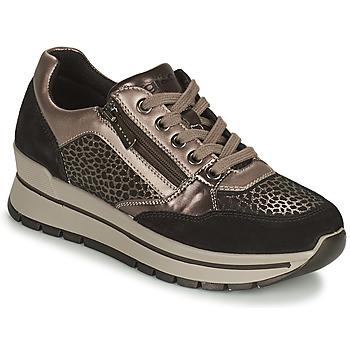 Cipők Női Rövid szárú edzőcipők IgI&CO DONNA ANISIA Ezüst / Fekete