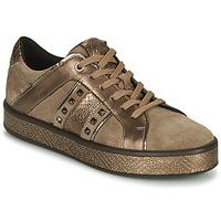Cipők Női Rövid szárú edzőcipők Geox LEELU Barna / Arany