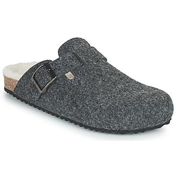 Cipők Női Mamuszok Geox BRIONIA Szürke