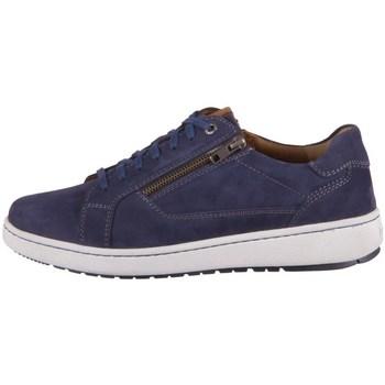 Cipők Férfi Oxford cipők Josef Seibel David 07