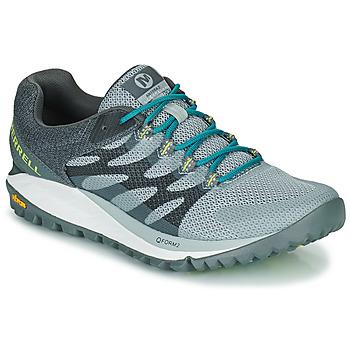 Cipők Női Rövid szárú edzőcipők Merrell ANTORA 2 Szürke / Kék