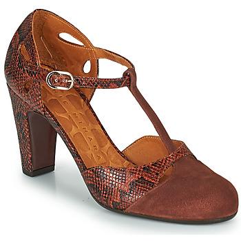 Cipők Női Félcipők Chie Mihara KUNA Barna