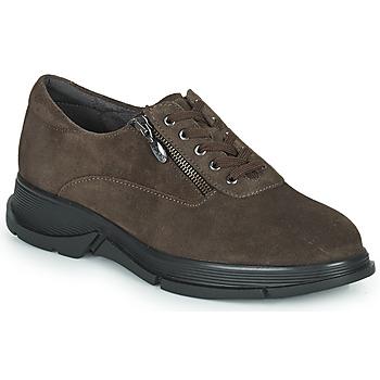 Cipők Női Rövid szárú edzőcipők Scholl BRISTOL ZIP Barna