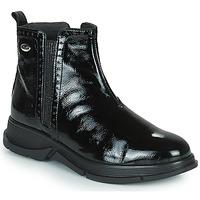 Cipők Női Csizmák Scholl YORK Fekete