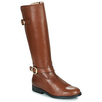 Cipők Lány Városi csizmák Acebo's 9904-CUERO-T Barna