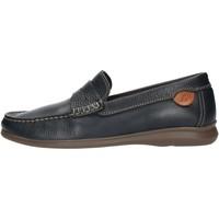 Cipők Férfi Mokkaszínek Luisetti 33901NA Blue