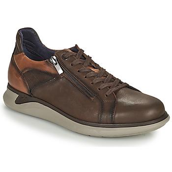 Cipők Férfi Rövid szárú edzőcipők Fluchos COOPER Barna