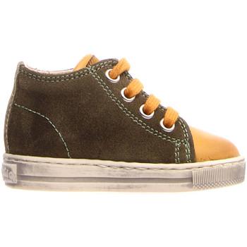 Cipők Gyerek Magas szárú edzőcipők Falcotto 2014600 12 Zöld