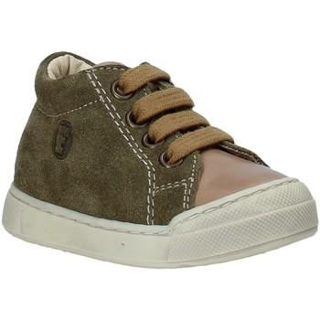 Cipők Gyerek Magas szárú edzőcipők Falcotto 2014601 01 Zöld