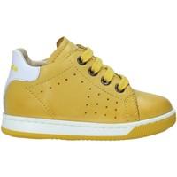 Cipők Gyerek Rövid szárú edzőcipők Falcotto 2013491 01 Sárga