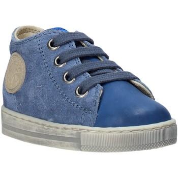 Cipők Gyerek Rövid szárú edzőcipők Falcotto 2014600 12 Kék