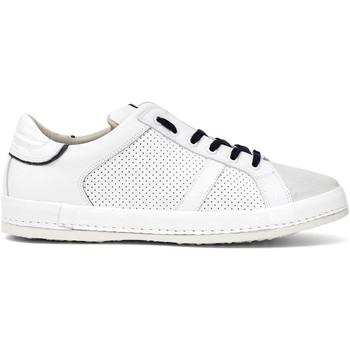 Cipők Férfi Rövid szárú edzőcipők Café Noir PT1050 Fehér