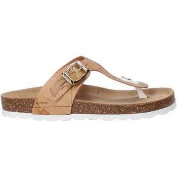 Cipők Gyerek Lábujjközös papucsok Alviero Martini E187 8391 Barna