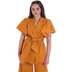 Ruhák Női Kabátok / Blézerek Cristinaeffe 0308 2491 Sárga