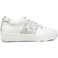 Cipők Női Rövid szárú edzőcipők Apepazza S1SLY11/DIA Fehér