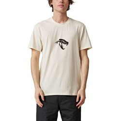 Ruhák Férfi Rövid ujjú pólók Globe T-shirt  Dion Agius Hollow beige