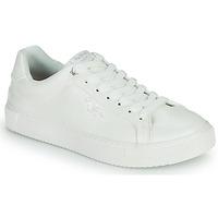 Cipők Női Rövid szárú edzőcipők Pepe jeans ADAMS COLLINS Fehér