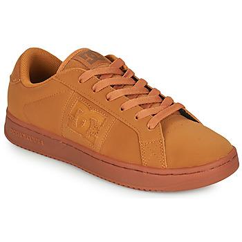 Cipők Férfi Rövid szárú edzőcipők DC Shoes STRIKER Teve