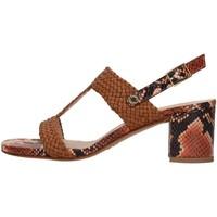 Cipők Női Szandálok / Saruk Albano 8074 BROWN