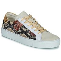 Cipők Női Rövid szárú edzőcipők Betty London PAVLINA Bézs