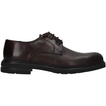 Cipők Férfi Oxford cipők Antony Sander 720 BROWN