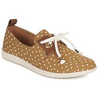 Cipők Női Rövid szárú edzőcipők Armistice VOLT ONE Barna