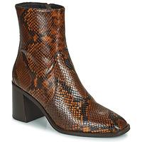 Cipők Női Bokacsizmák Minelli MARIELLA Barna