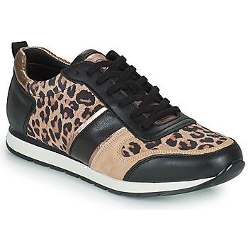 Cipők Női Rövid szárú edzőcipők Betty London PARMINE Fekete