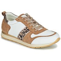 Cipők Női Rövid szárú edzőcipők Betty London PERMINE Fehér