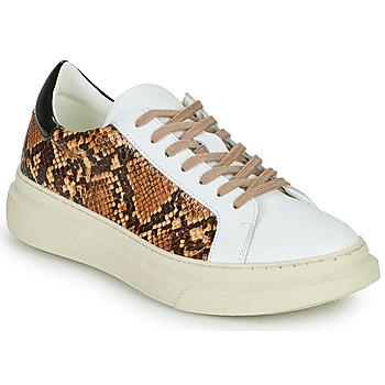Cipők Női Rövid szárú edzőcipők Betty London PAROLE Fehér