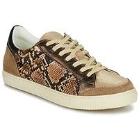 Cipők Női Rövid szárú edzőcipők Betty London PERMINA Barna