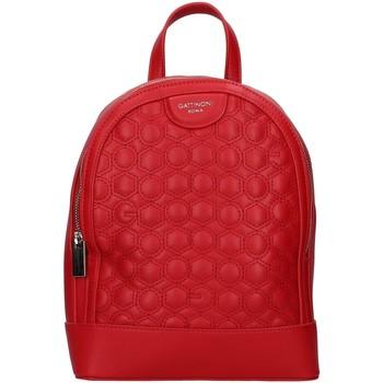 Táskák Hátitáskák Gattinoni BENTK7880WV RED