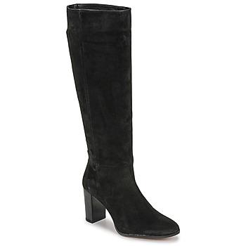 Cipők Női Városi csizmák Fericelli PINO Fekete