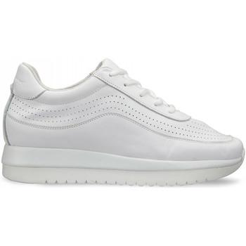 Cipők Női Rövid szárú edzőcipők Docksteps DSW951000 Fehér