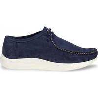 Cipők Férfi Mokkaszínek Docksteps DSE106531 Kék