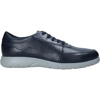 Cipők Férfi Rövid szárú edzőcipők Stonefly 216219 Kék