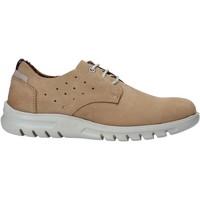 Cipők Férfi Oxford cipők Rogers 2834-NOB Bézs