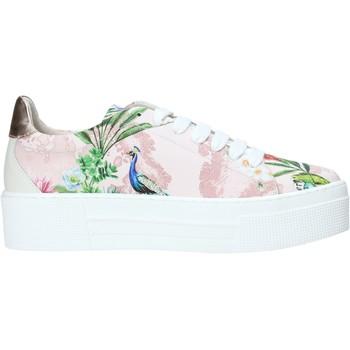 Cipők Női Rövid szárú edzőcipők Alviero Martini P806 622A Rózsaszín