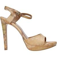 Cipők Női Szandálok / Saruk Alviero Martini E130 8391 Barna